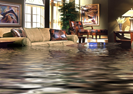 Deal with a water damage emergency